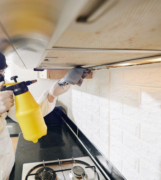 Cleaning service worker spraying detergent